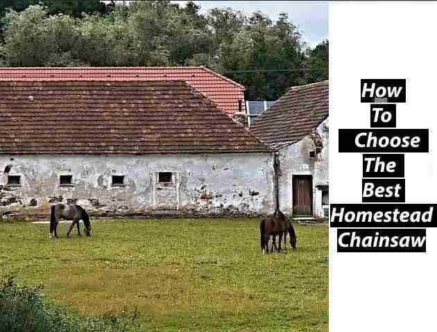 Best Homestead Chainsaw