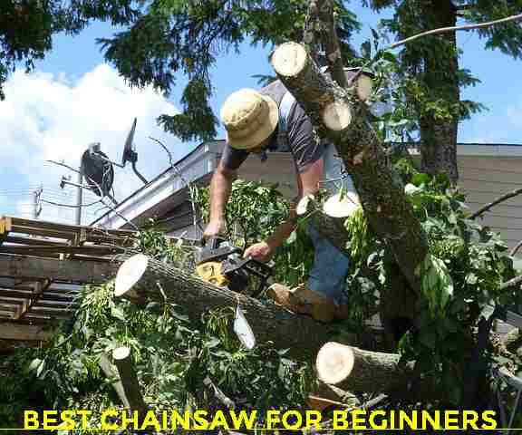 best chainsaw for beginner