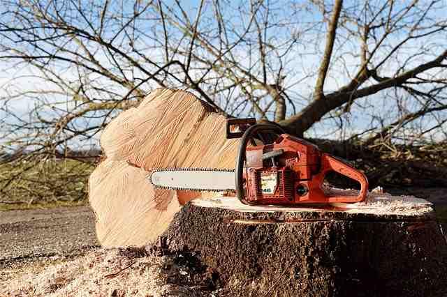 best chainsaw under $500